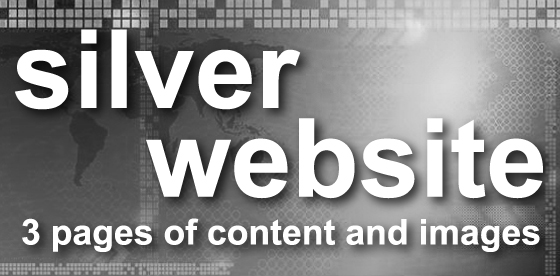 silver website -3 pages of content and images