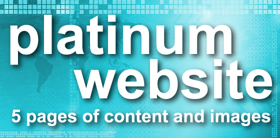 platinum website - 5 pages of content and images